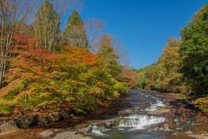 秋景色を求めて・