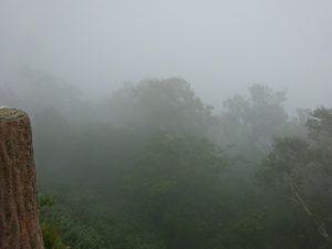 名前の通りすごい霧