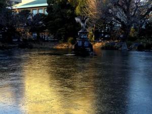 凍結した鶴の噴水池