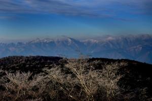 霧氷の大台ケ原 (3)